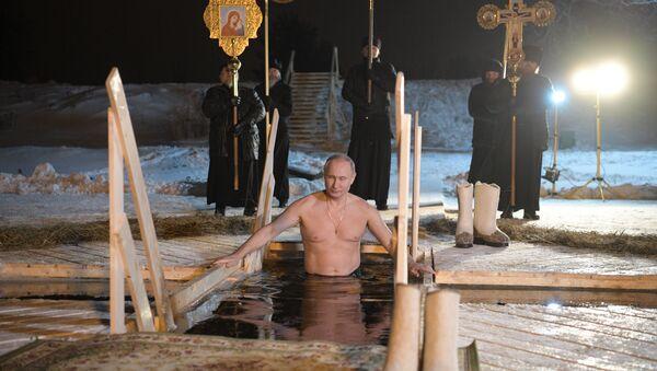 Rusya Devlet Başkanı Vladimir Putin - Sputnik Türkiye