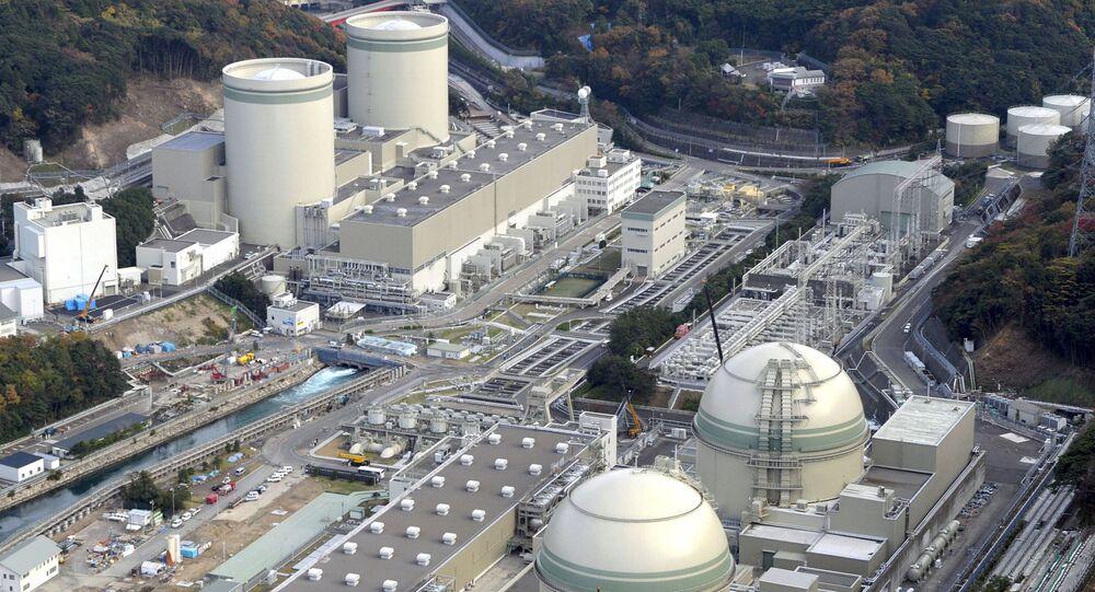 Nükleer reaktör