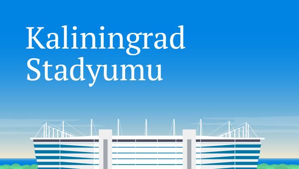 Kaliningrad Stadyumu - Sputnik Türkiye