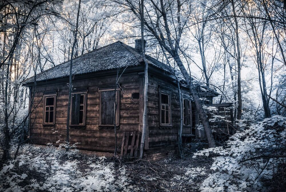 Çernobil'den kareler