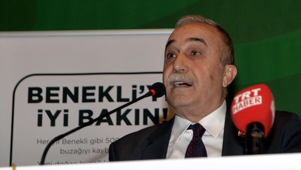 Ahmet Eşref Fakıbaba - Sputnik Türkiye