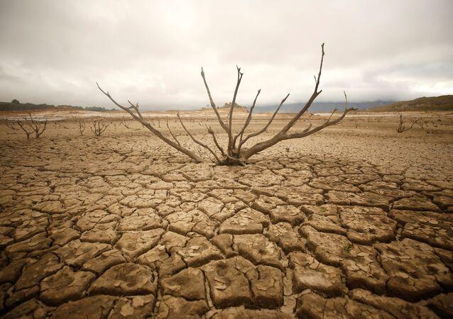 Güney Afrika'nın başkenti Cape Town yakınlarındaki Theewaterskloof Barajı, kuraklık