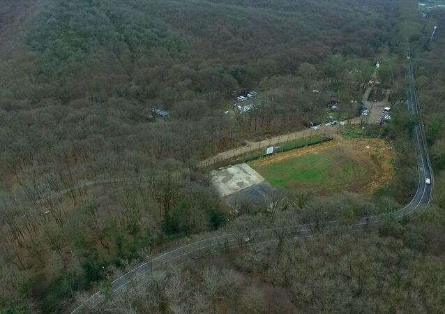 Maçka Parkı'ndan sökülen ağaçlar Sarıyer'e dikildi