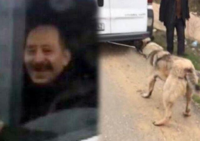 Köpeğe işkenceye para cezası