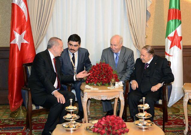 Cumhurbaşkanı Recep Tayyip Erdoğan ve Cezayirli mevkidaşı Cumhurbaşkanı Abdulaziz Buteflika