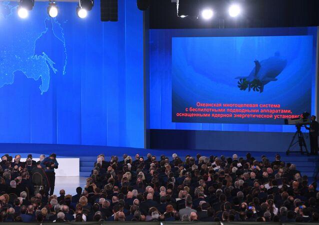 Putin, Federal Meclis üyelerine sesleniyor