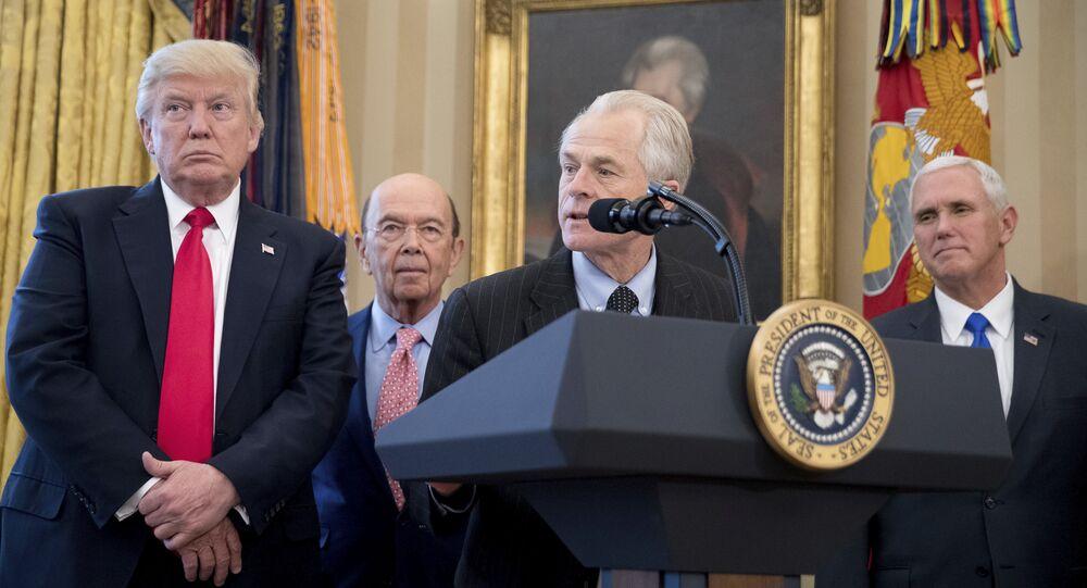 ABD Başkanı Donald Trump'ın Ticaret Danışmanı Peter Navarro