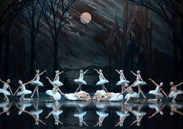 St. Petersburg Bale Topluluğu, 'Kuğu Gölü' ve 'Uyuyan Güzel' ile İstanbul'da olacak