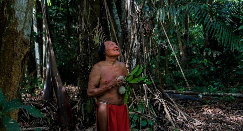 Amazon yerlisi