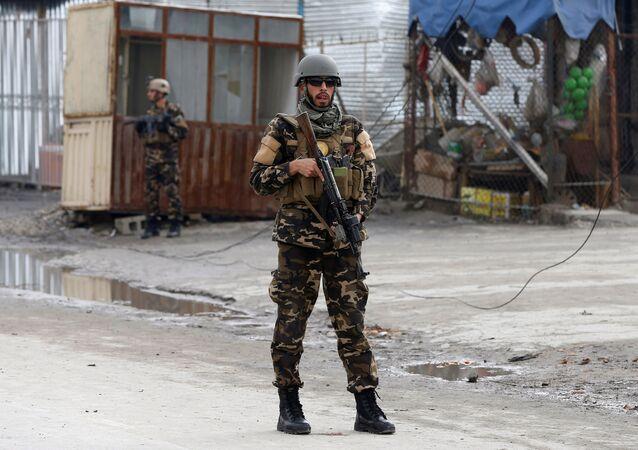 Kabil-Afganistan güvenlik güçleri