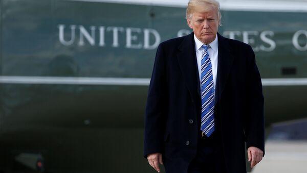 Donald Trump Air Force One - Sputnik Türkiye