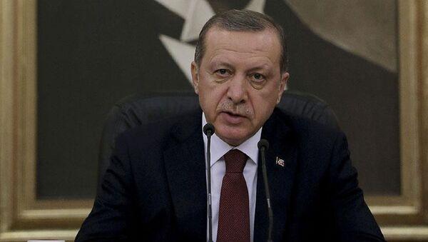 Erdoğan, havalimanı - Sputnik Türkiye