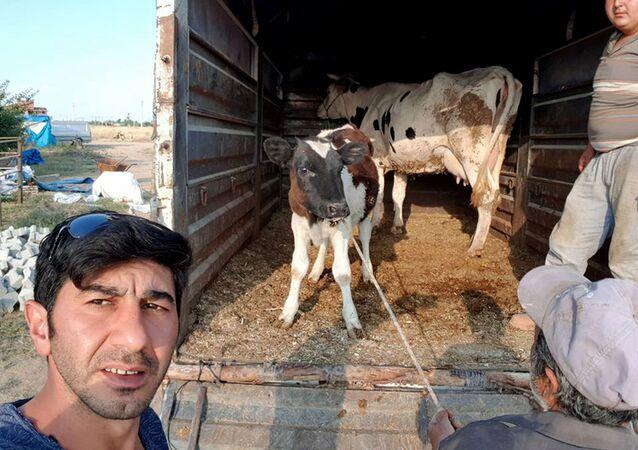 Birlik Beraberlik Tarım Hayvancılık İthalat İhracat Sanayi ve Ticaret Anonim Şirketi, Serkan Erden