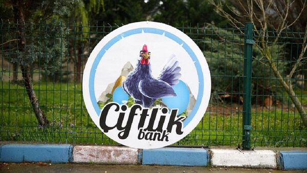 Çiftlik Bank - Sputnik Türkiye