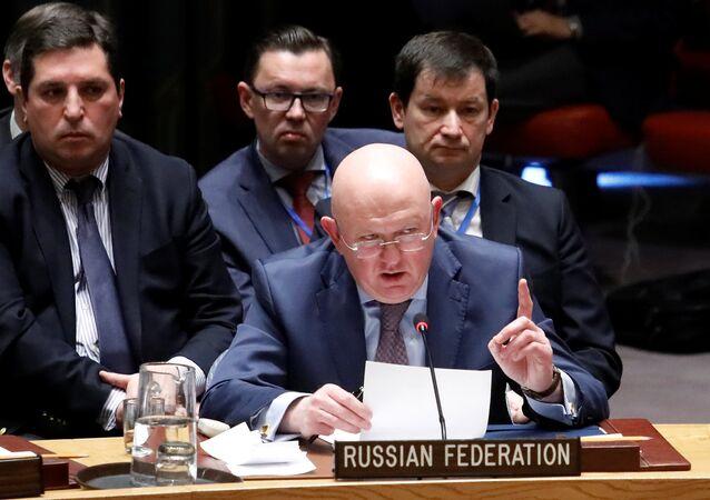 Rusya BM Daimi Temsilcisi Vasiliy Nebenzya