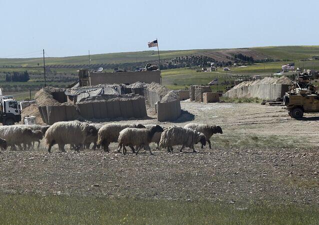 Menbiç'teki ABD üslerininin birinin önünden çoban sürüsünü güdüyor. Nisan 2018