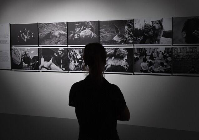 Andrey Stenin Fotoğrafçılık Yarışması
