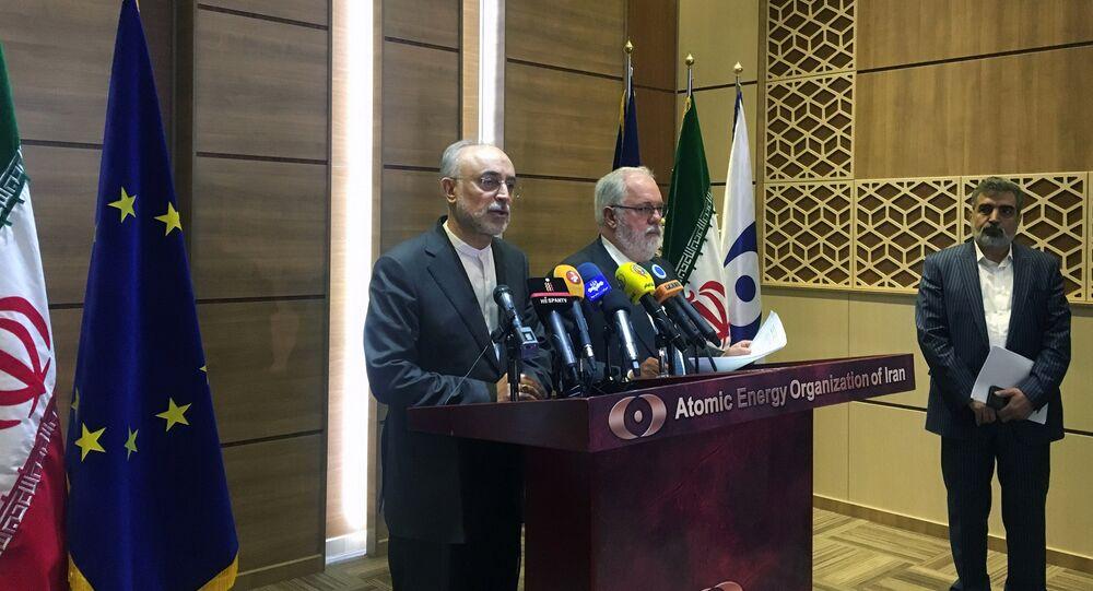 İran Atom Enerjisi Kurumu Başkanı Ali Ekber Salihi ile Avrupa Komisyonu'nun enerjiden sorumlu üyesi Miguel Arias Canete Tahran'da basın toplantısında