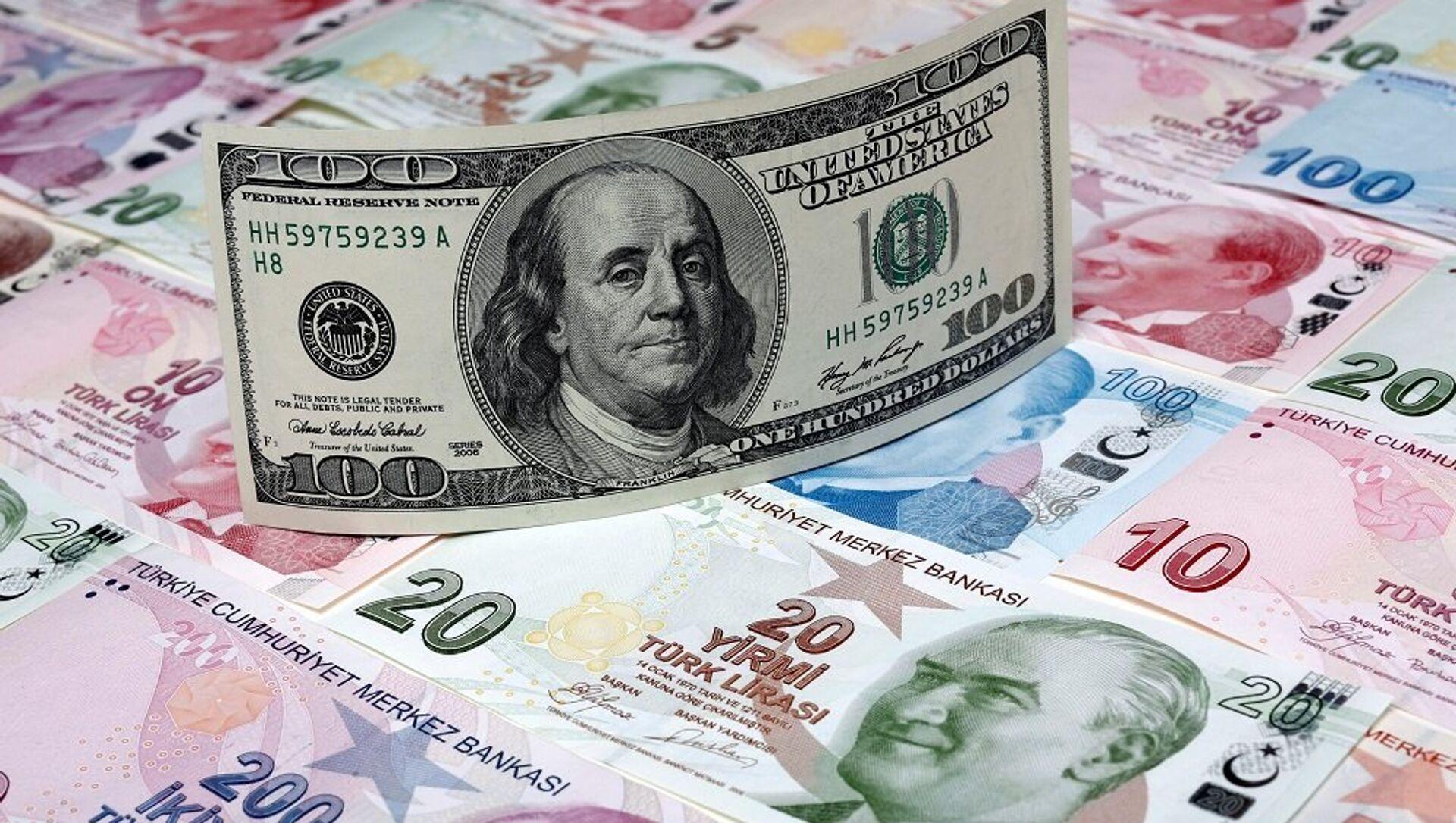 Dolar, Türk Lirası - Sputnik Türkiye, 1920, 08.04.2021