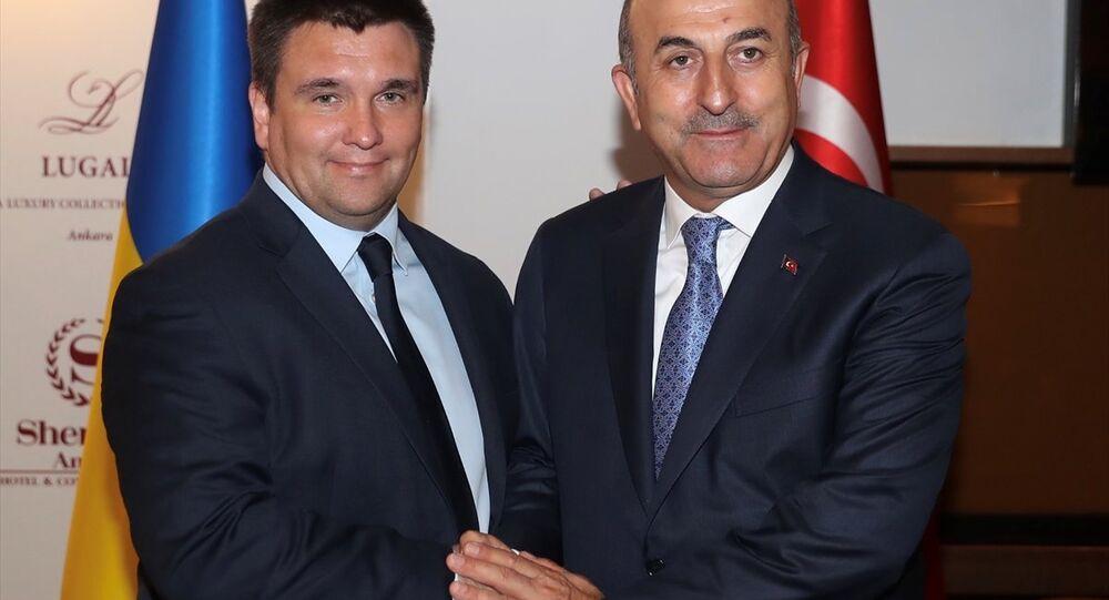Mevlüt Çavuşoğlu - Pavlo Klimkin