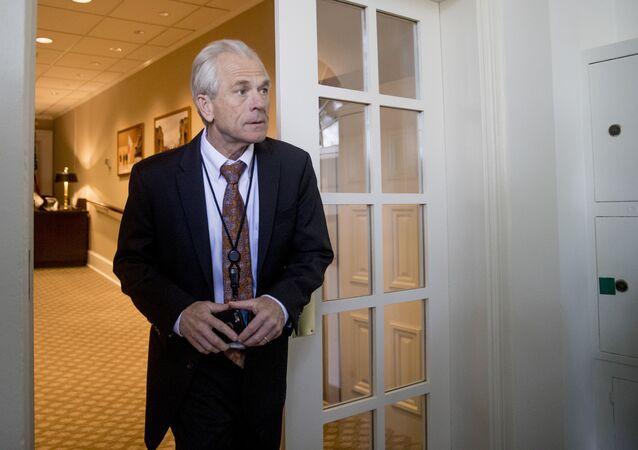 Beyaz Saray Ulusal Ticaret Konseyi Direktörü Peter Navarro