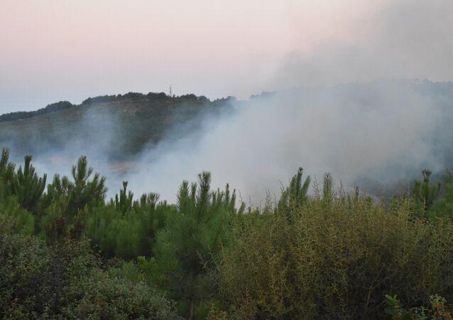 Aydos - Orman yangını