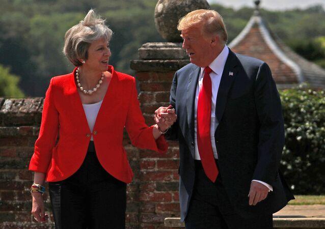 İngiltere Başbakanı Theresa May- ABD Başkanı Donald Trump