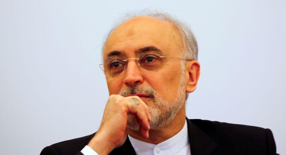İran Cumhurbaşkanı Yardımcısı ve İran Atom Enerjisi Kurumu Başkanı Ali Ekber Salihi