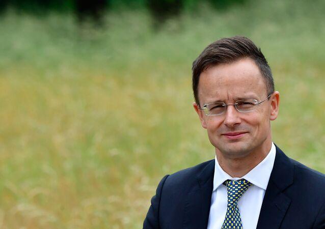 Macaristan Dışişleri ve Dış Ticaret Bakanı Peter Szijjarto