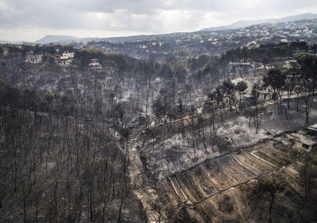 Az sonra yangın Atina ile Korint arasında bulunan sahil yerşelim merkezlerine geçti.