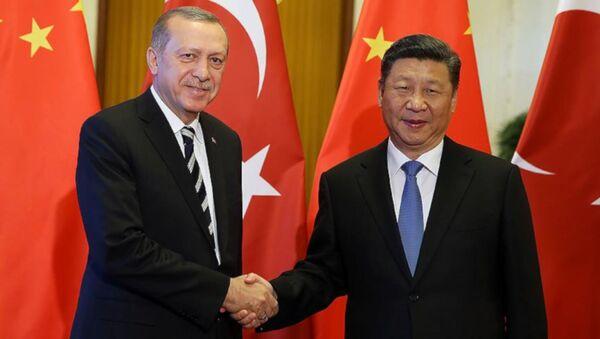 Cumhurbaşkanı Erdoğan, Çin Devlet Başkanı Şi ile bir araya geldi - Sputnik Türkiye