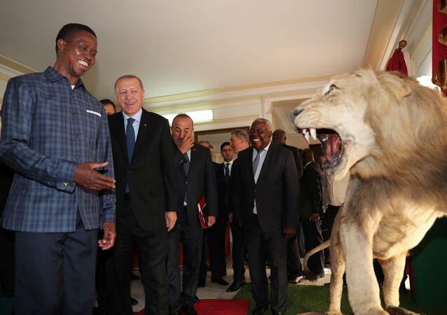 Zambiya Devlet Başkanı Edgar Lungu, Erdoğan'ı devlet sarayında ağırladı.