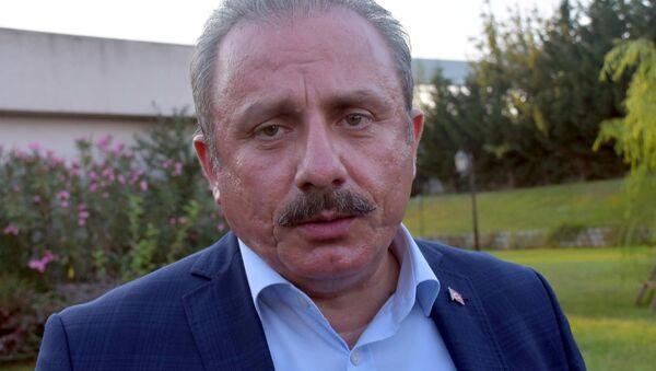 TBMM Başkanvekili Mustafa Şentop - Sputnik Türkiye
