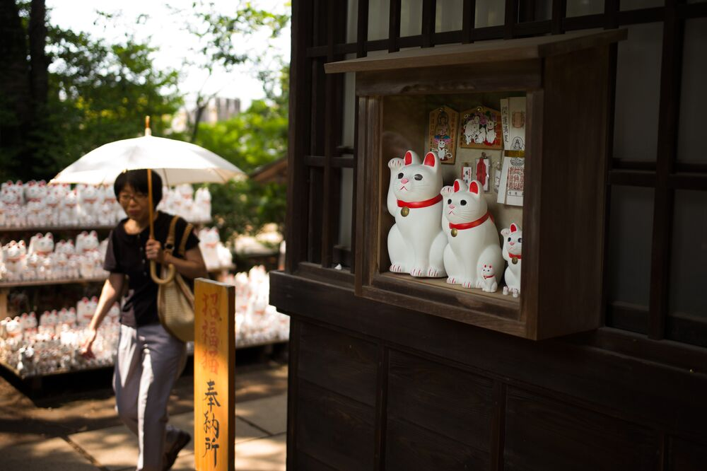 Kedi heykellerinin ziyaretçileri gittikçe artan tapınağa şans getirdiği ise açıkça ortada. Rahip yardımcısı Kasukawa Şimdi 2020'de yapılacak Tokyo Olimpiyatları ile birlikte birçok uluslararası ziyaretçi buraya geliyor. Tapınak hakkında konuşarak burayı küresel ölçekte ünlü bir yer haline getiriyorlar dedi.