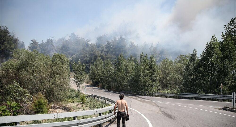 Mudanya'da yangın