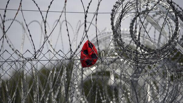 Macaristan- Sırbistan- Sığınmacı - Sputnik Türkiye