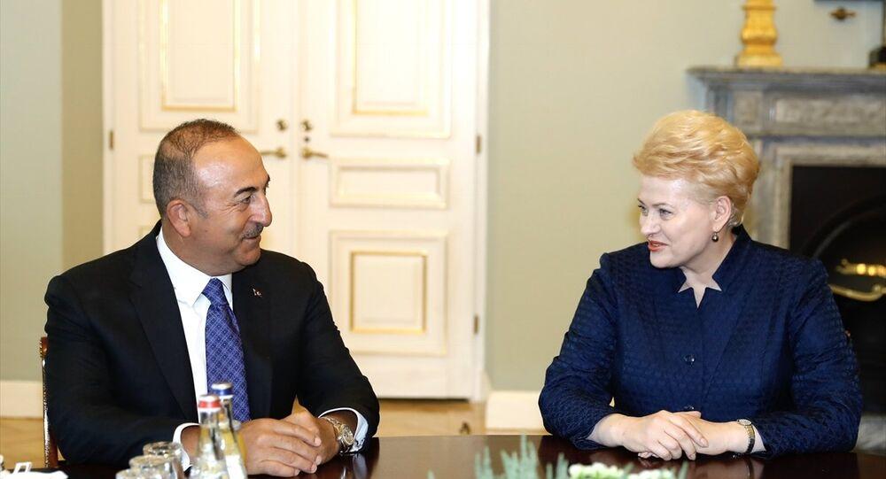 Dışişleri Bakanı Mevlüt Çavuşoğlu Vilnius'ta Litvanya Cumhurbaşkanı Dalia Grybauskaite tarafından ağırlandı.