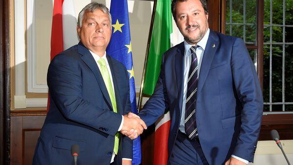 Orban ile Salvini - Sputnik Türkiye