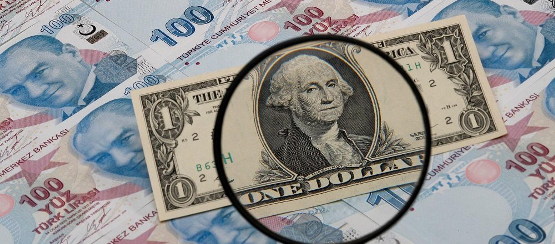 Dolar, Türk Lirası - Sputnik Türkiye, 1920, 26.02.2021