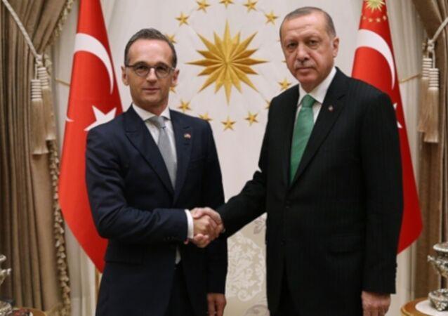 Erdoğan-Maas