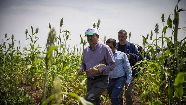 Tarım ve Orman Bakanı Bekir Pakdemirli Sudan'da - Sputnik Türkiye