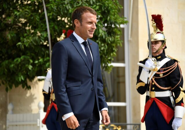 Fransa Cumhurbaşkanı Emmanuel Macron, Élysée (Elize) Sarayı'nda