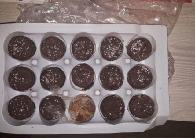 Pişmaniye kutularında çikolata görünümlü afyon sakızı ele geçirildi