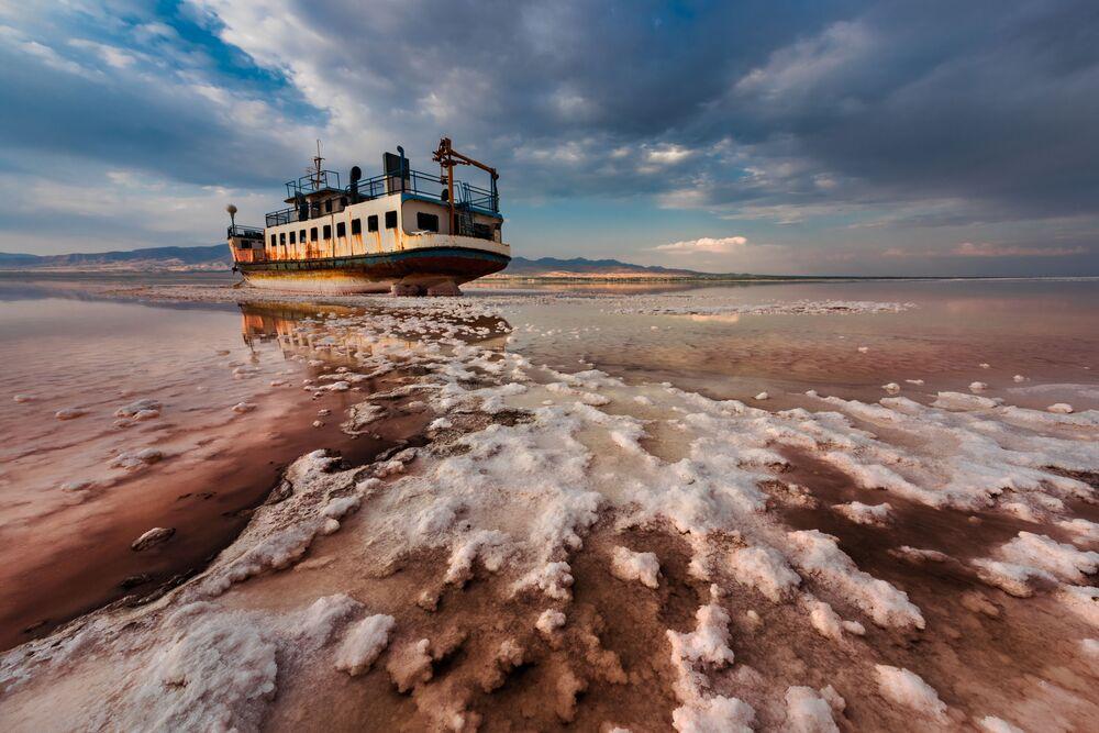 'Yılın En İyi Çevre Fotoğrafçısı' yarışmasının kazananları