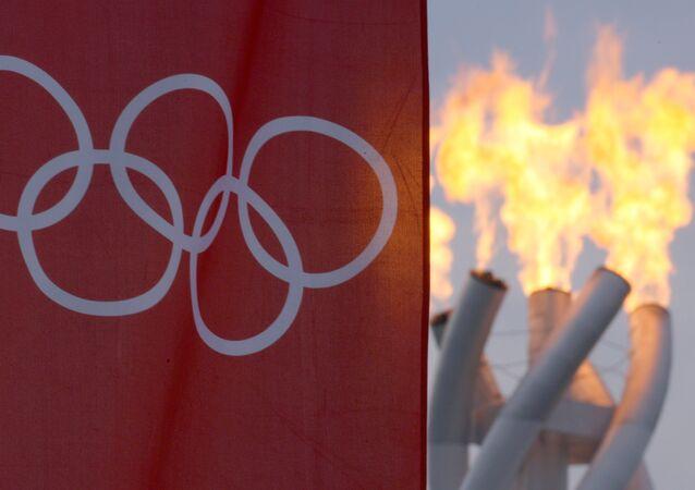 Kış Olimpiyatları