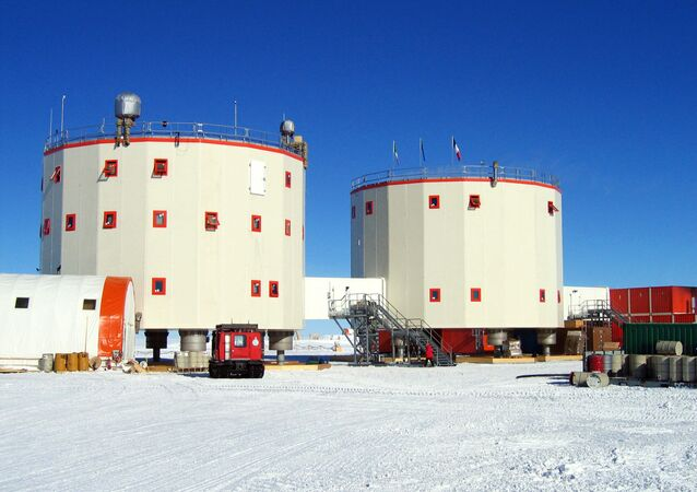 Concordia Araştırma Merkezi