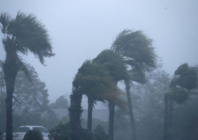 ABD'de Michael Kasırgası