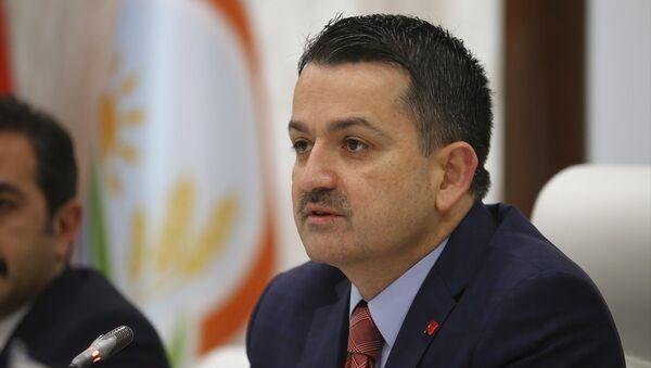 Bekir Pakdemirli - Sputnik Türkiye