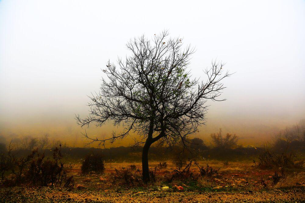 Öğle saatlerinden itibaren etkili olan sis nedeniyle görüş mesafesi yer yer 50 metreye kadar düştü.