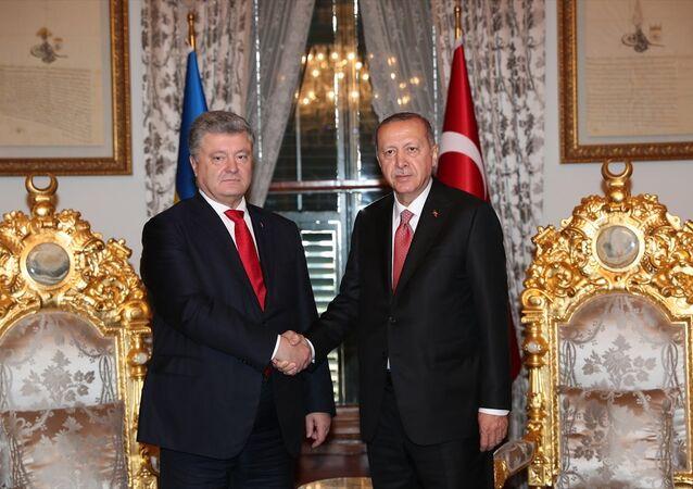 Türkiye Cumhurbaşkanı Recep Tayyip Erdoğan ve Ukrayna Devlet Başkanı Petro Poroşenko